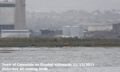 Canoe event on southern saltmarsh